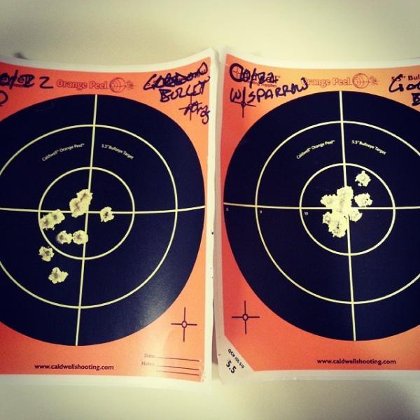 ruger-targets-with-sparrow-suppressor-190.jpg